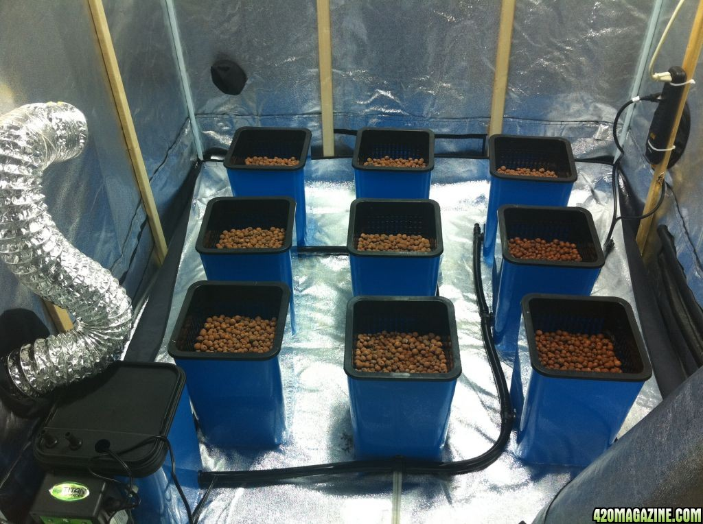 Hydroponic Dwc Deep Water Culture How To Grow Weed Indoors