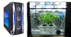 PC grow box