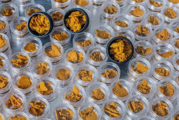 marijuana concentratess